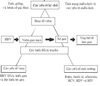 VGB2 (19-07-17)