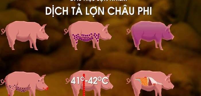 dịch ta lon Chau Phi 1(20-07)