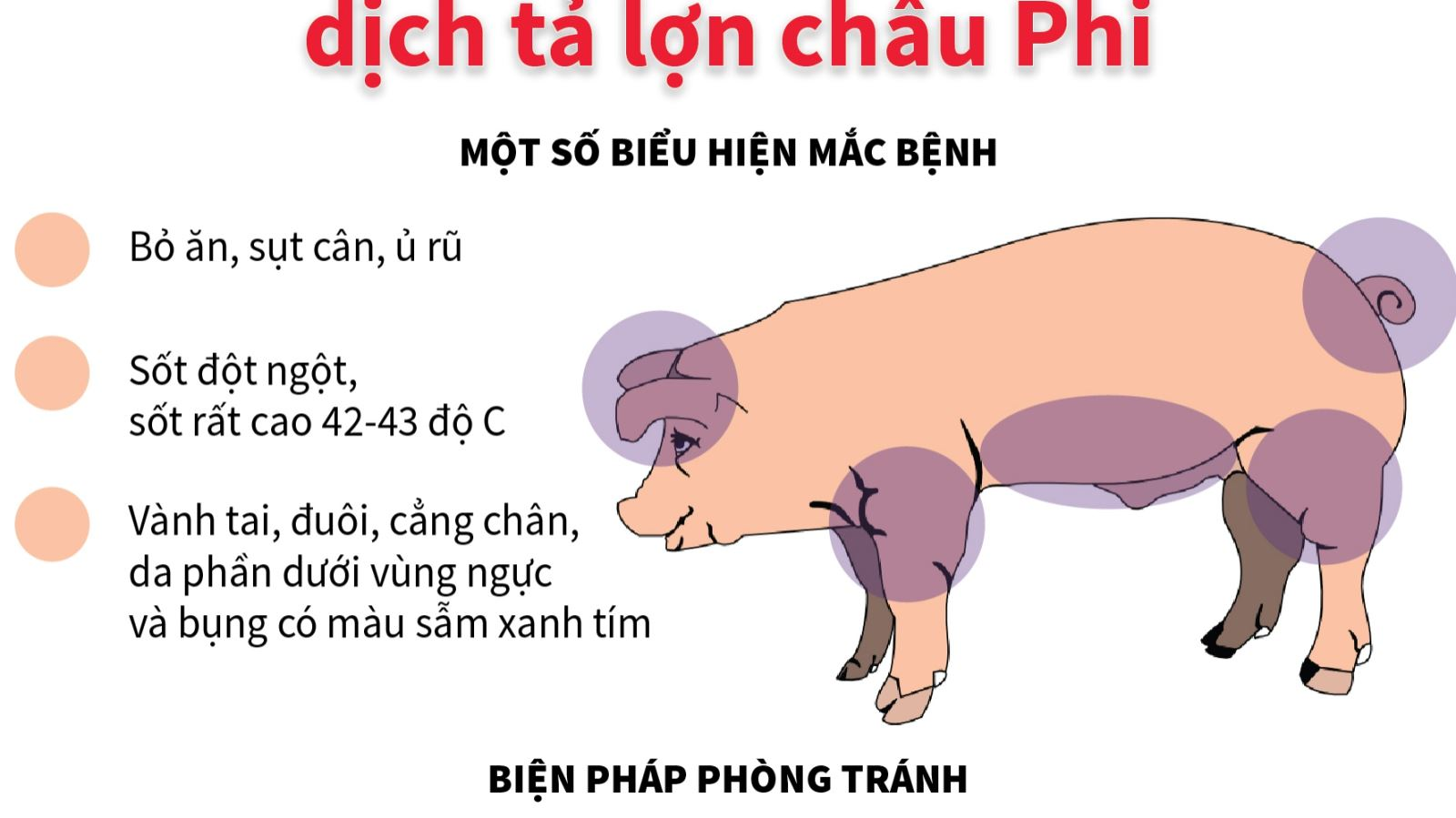dich ta lon Chau Phi( 20-07)